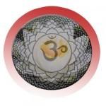 El símbolo del loto y el mantra Om Mani Padme Hum