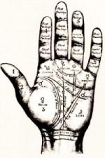Significado de las líneas de la mano