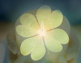 Hechizos y conjuros para la buena suerte