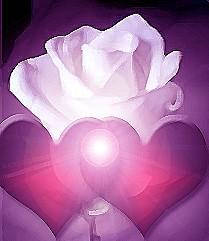 Hechizo con flores blancas para enamorar.