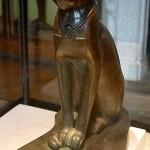 El poder esotérico del los gatos