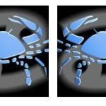 Compatibilidad del signo de Cáncer con Cáncer
