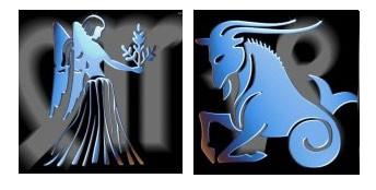 Compatibilidad del signo de Virgo con Capricornio