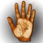 Calcular las fechas en las líneas de la mano