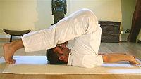 Tres posturas de Yoga: Postura del arado