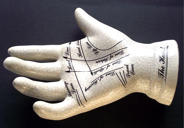 Lo importante en el estudio de la mano