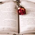 Cómo elegir los mejores hechizos, amarres y conjuros para el amor