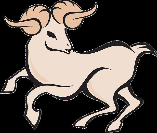 Cómo será el año de la cabra