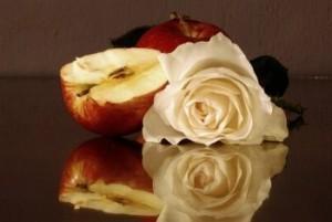 370575_553077339_manzanas-y-rosas_H071328_L